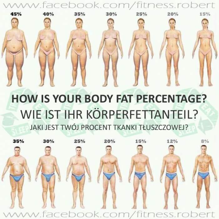 How is your Body Fat Percentage? Healthy Fitness Workouts KFA Ab