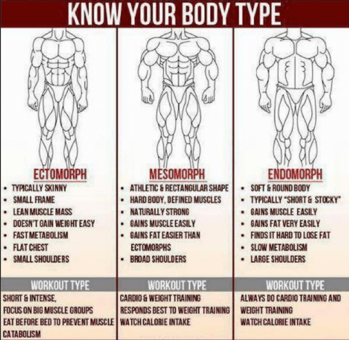 Know your Body Type? Ecto Meso Endo Healthy Fitness Workouts KFA