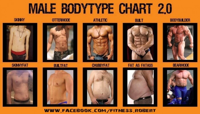 Male Bodytype Chart 2.0 - Healthy Fitness Athletic Bulk Skinny