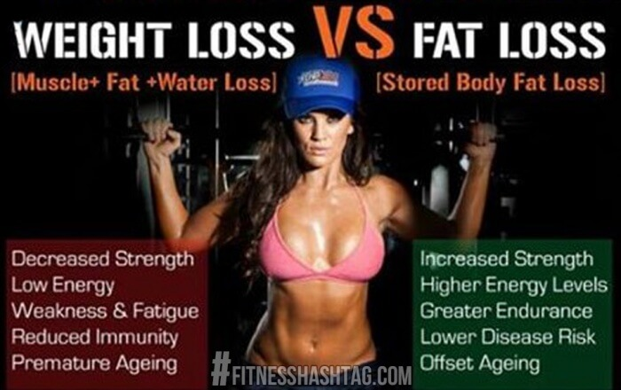 Muscle Fat Water Loss VS Stored Body Fat Loss - Healthy Fitness