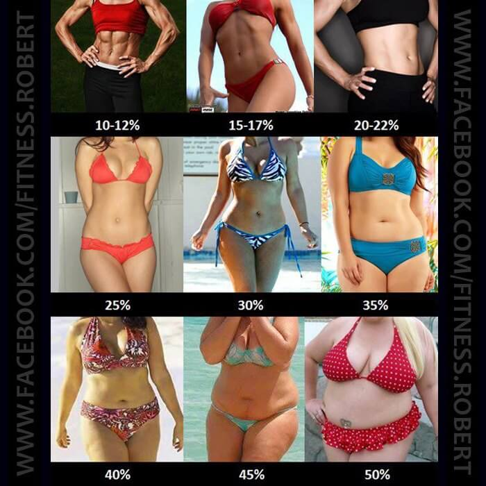 What Is Your Body Fat Percentage WOMEN - Healthy Fitness Workout
