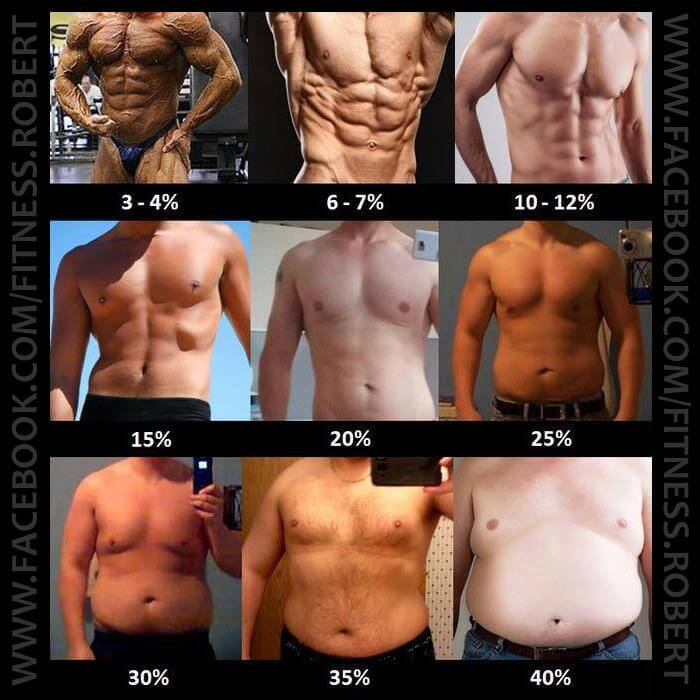 What Is Your Body Fat Percentage MEN - Healthy Fitness Workout