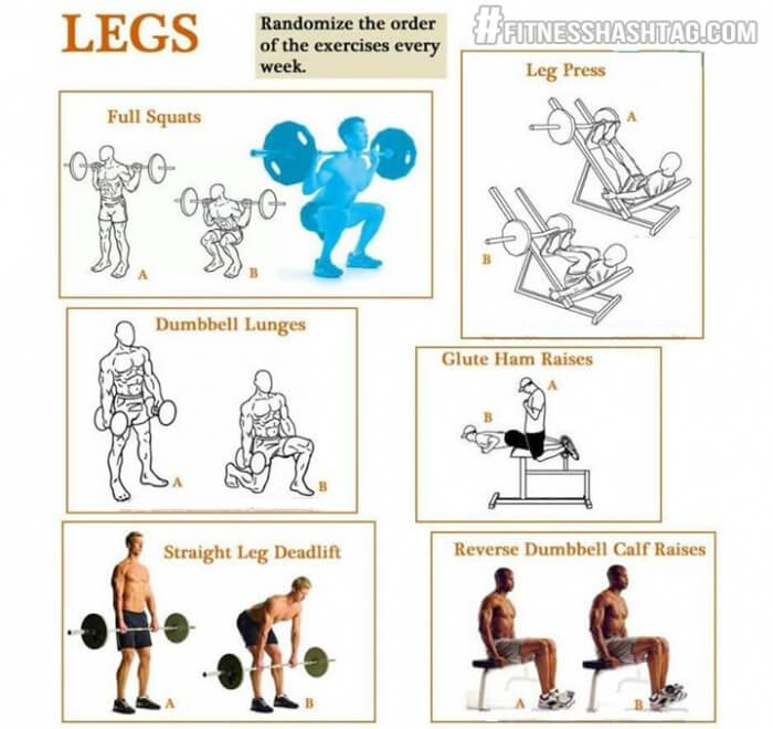 Leg Workout - Healthy Fitness Exercise Lunges Squats Deadlift