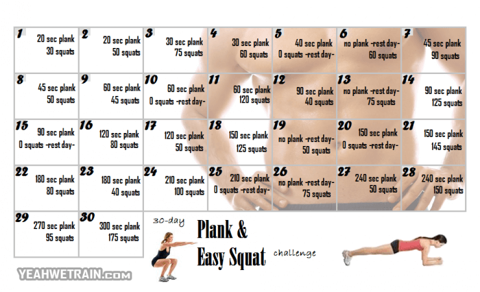 30 Day Plank and Easy Squat Challenge - Healthy Fitness Exercise