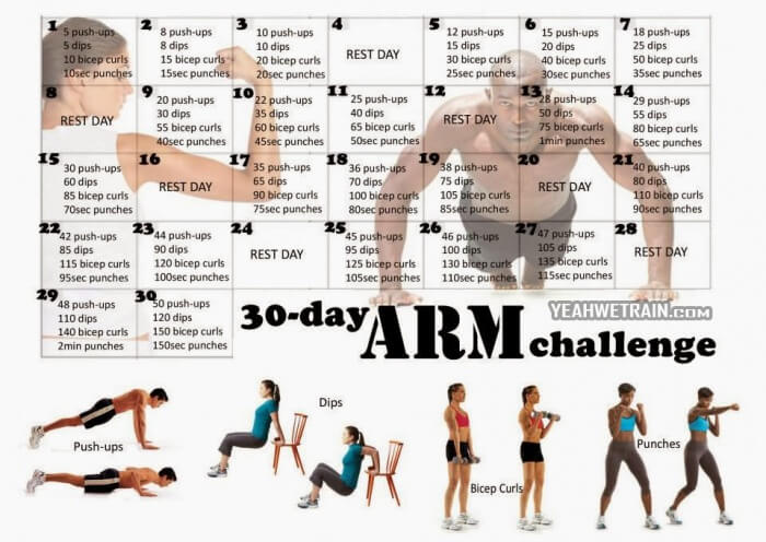 30 Day Arm Challenge - Healthy Fitness Exercise Bicep Tricep Abs