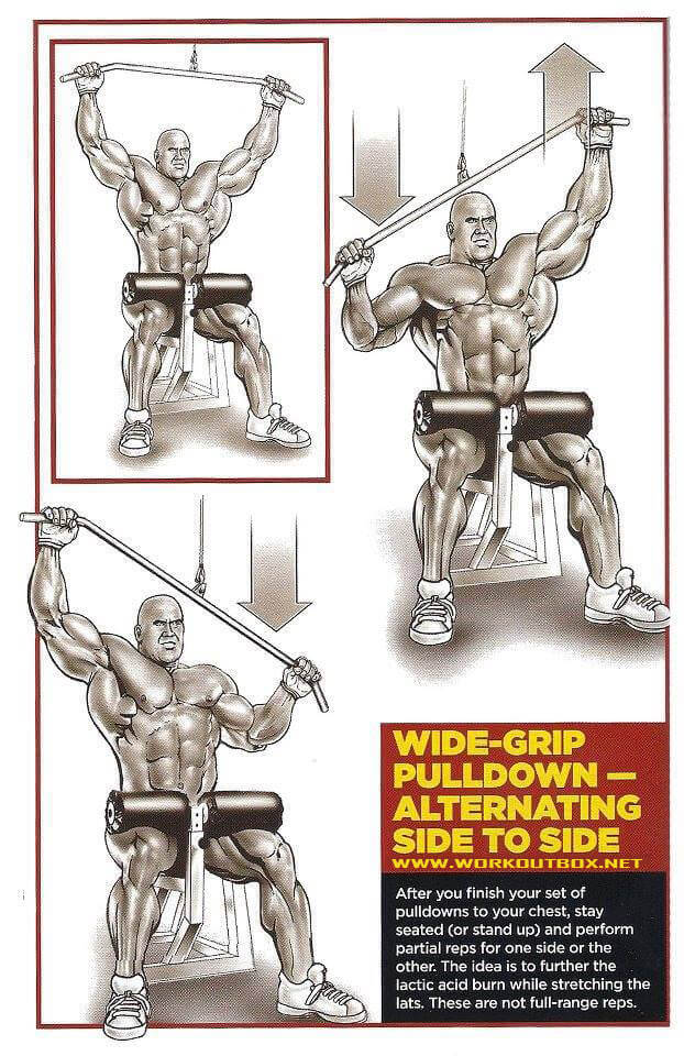 Wide-Grip Pulldown Alternating Side to Side - Fitness Healthy