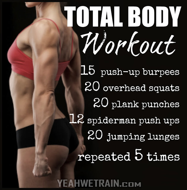 Total Body Workout - Healthy Fitness Home Training Abs Butt Arms