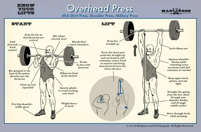 Overhead Press - Fitness Workout Military Shoulder Lifts Healthy