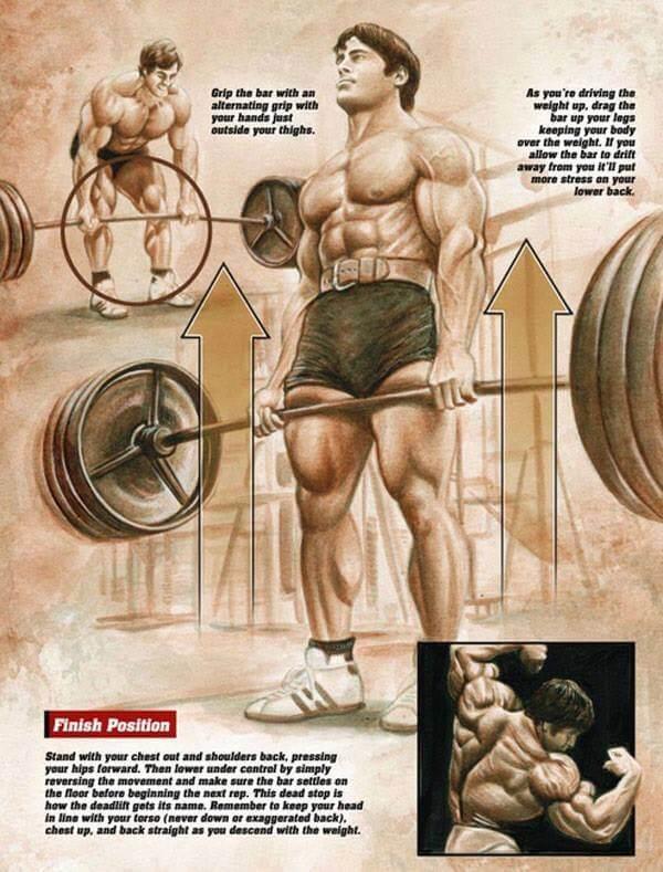 Deadlift Grip The Bar - Healthy Fitness Workout Legs Lower Back