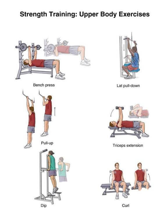 Strength Training Upper Body Exercises - Healthy Fitness Workout