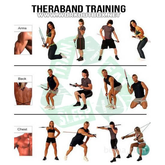 Theraband Training - Healthy Fitness Workouts Bicep Chest Back