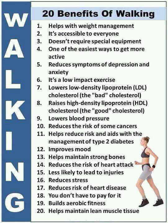 20 Benefits Of Walking - Healthy Fitness LDL HDL  Muscle Weight