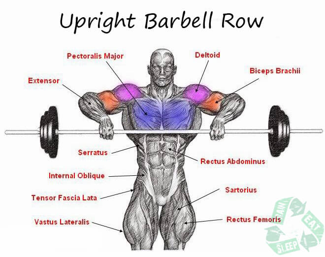 Upright Row Front Combined - Shoulder Workout Upper Body Ab Arms