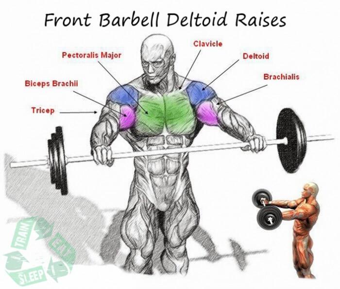 Front Barbell Deltoid Raises - Shoulder Workout Upper Body Arms