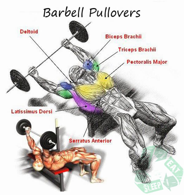 Barbell Pullovers - Shoulder Workout Chest Arms Sixpack Body Abs
