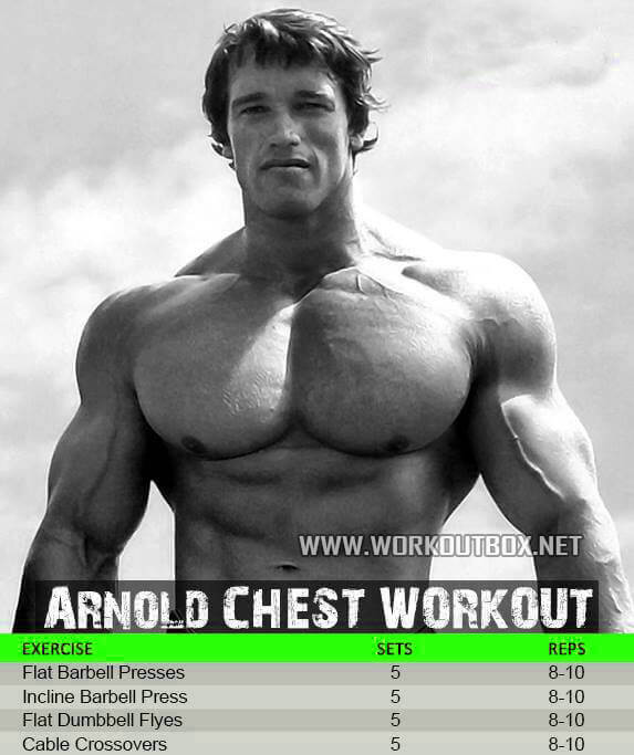 Arnold Chest Workout - Flat Barbel Press Flyes Crossover Sixpack