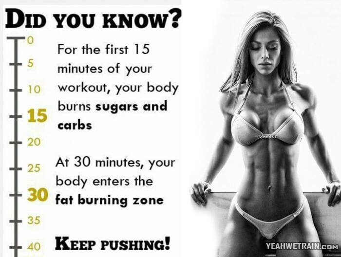 Did You Know... - Healthy Motivation Full Body Training Abs Leg