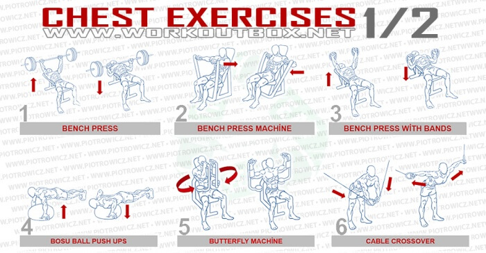 Chest Exercises Part 1 - Healthy Fitness Workout Bench Press Abs