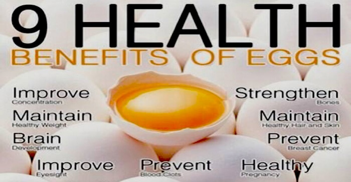 9 Healthy Benefits Of Eggs - Healthy Fitness Ab Brain Improve