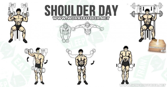 Shoulder Day - Healthy Fitness Workout Arms Bicep Tricep ...