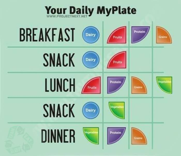 Your Daily MyPlate - Healthy Nutrition Tips Sixpack Breakfast Ab