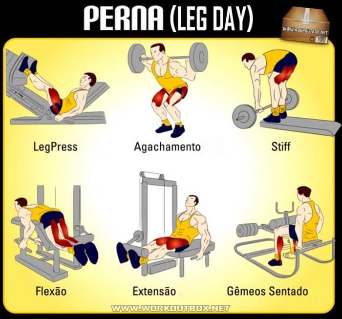 Perna (Leg Day) Workout - Healthy Nutrition Tips Legs Butt Core