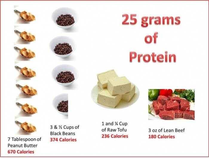 25 Grams Of Protein - What You Need To Eating! Healthy Fitness