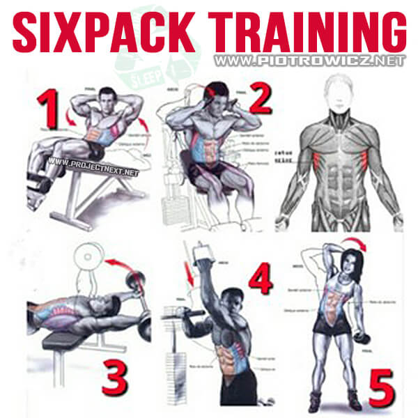 Sixpack Training - Healthy Ab Exercises Fitness Core Arms Home