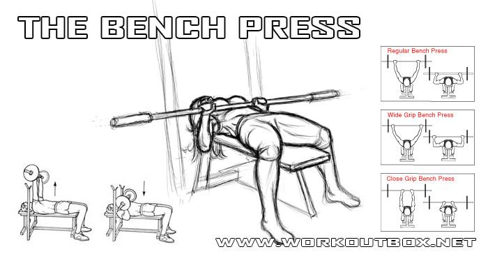 The Bench Press - Chest Workout Regular Wide Close Grip Healthy