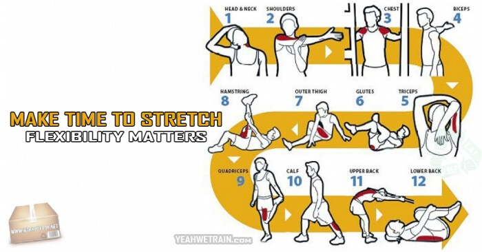 Make Time to Stretch: Flexibility Matters - Fitness Workouts Abs