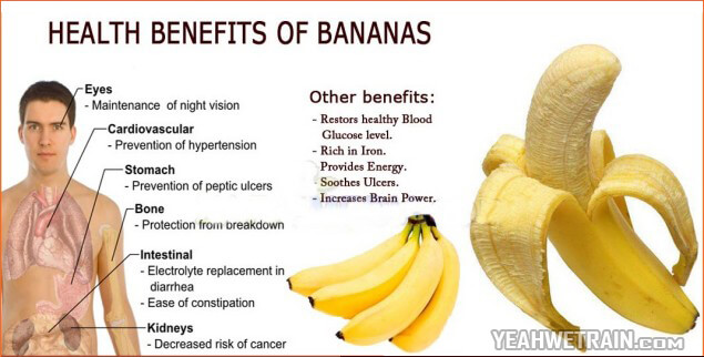 Health Benefits Of Bananas - Iron Blood Brain Eyes Bone Stomach