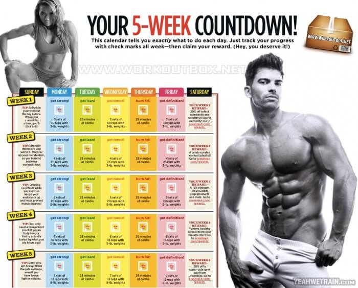 Your 5-Week Countdown Workout - Train Your Body Sixpack Bicep