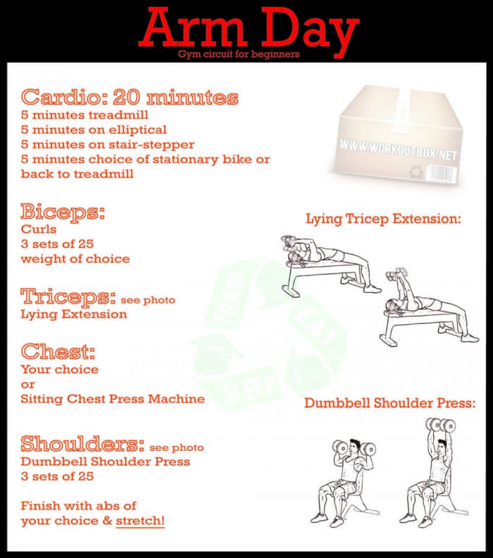 Arm Day Gym Circuit For Beginners