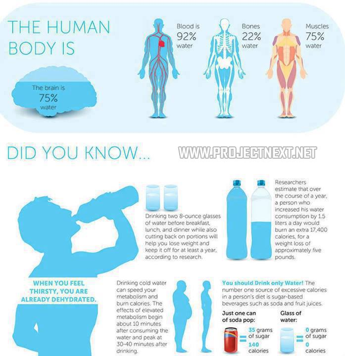 Did You Know... Drinking More Water Can Help Your Body Burn Fat!