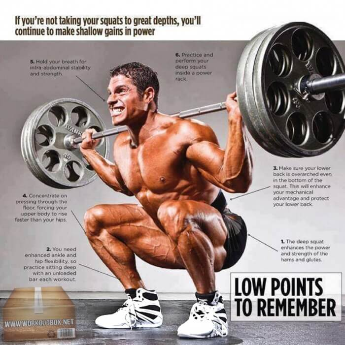 6 Best Squat Tips ! Low Points To Remember Leg And Butt Training