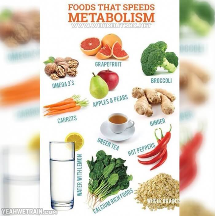 Foods That Speeds Metabolism - Healthy Fitness Recipe Tips Trick