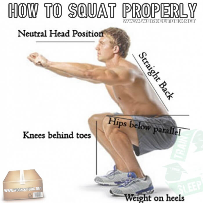 How To Squat Properly ! Fitness Healthy Leg But Back Workout Abs