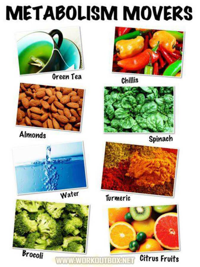 Metabolism Movers - Green Tea Chillis Almonds Spinach Water Vegi