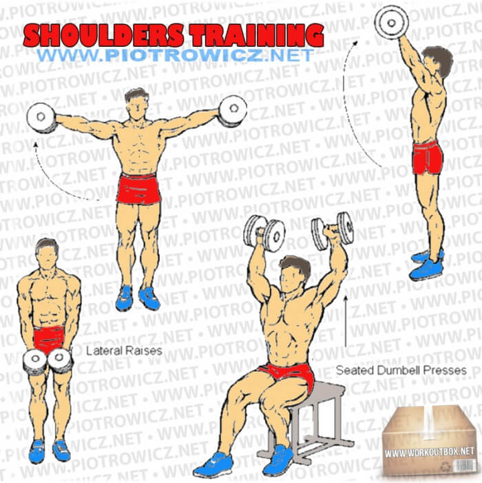 Shoulders Training - Hardcore Arm Exercises And Workout Routines