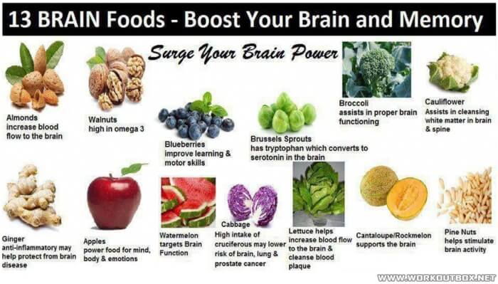 13 Brain Foods - Boost Your Brain And Memory To The Maximum Tips
