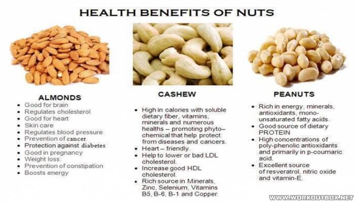Health Benefits Of Nuts - Alonds Cashew Peanuts Fiber Fit Fat Ab