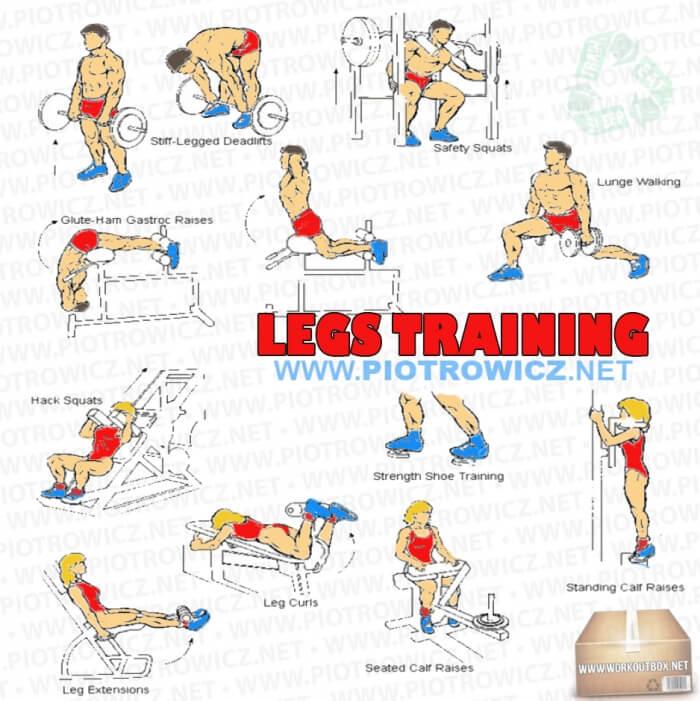 legs workout chart pdf for women