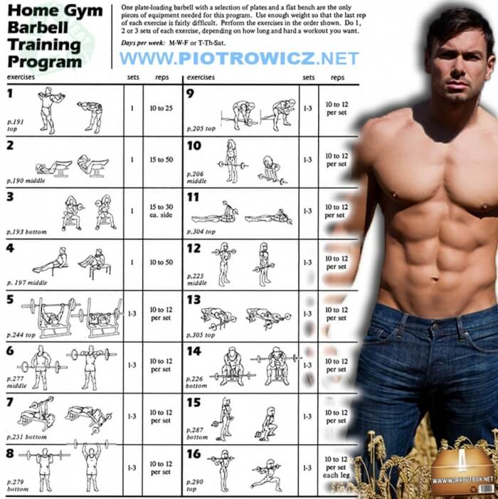 Home Gym Barbell Training Program - Full Body Workout Plan 6Pack