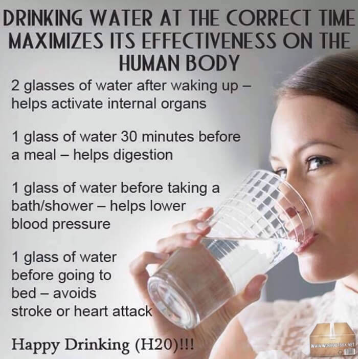 Drinking Water At The Correct Time Maximizes Its Effectiveness
