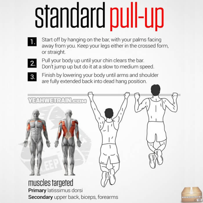 Standard Pull-Up ! Healthy Fitness Training Tip Workouts Routine