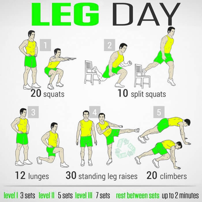 Leg Day ! Strong At Home Training For Your Legs Healthy Fitness