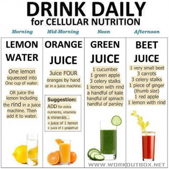 Drink Daily For Cellular Nutrition - Healthy Fitness Tip Workout
