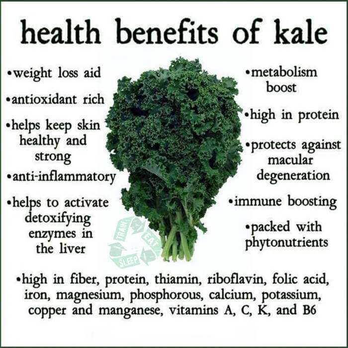 Healthy Benefits Of Kale - Fitness Tips Tricks Recipes Workouts