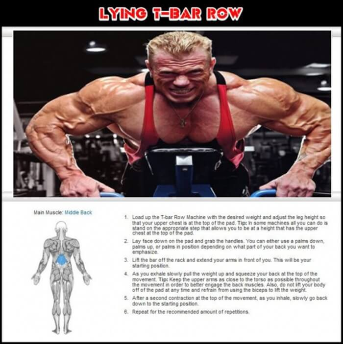 Lying T-Bar Row - Healthy Fitness Training Routine Exercise Back