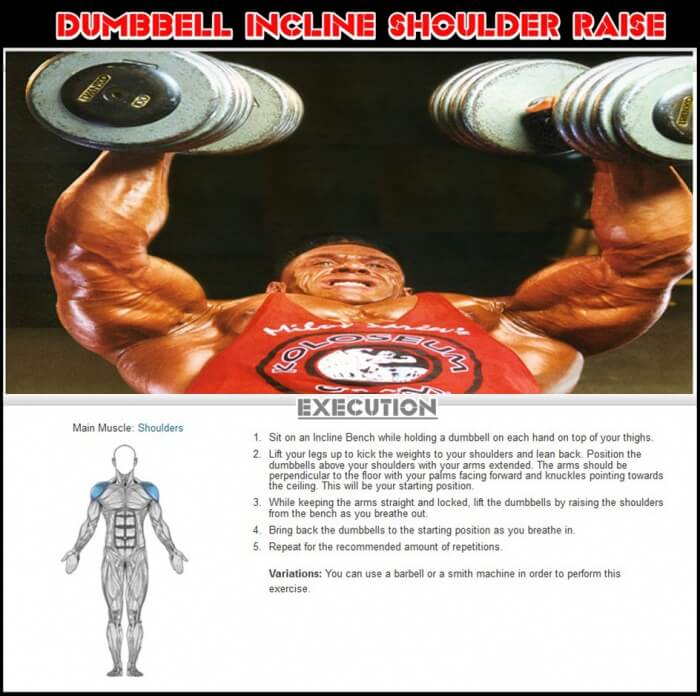 Dumbbell Incline Shoulder Raise - Healthy Fitness Workout Plans
